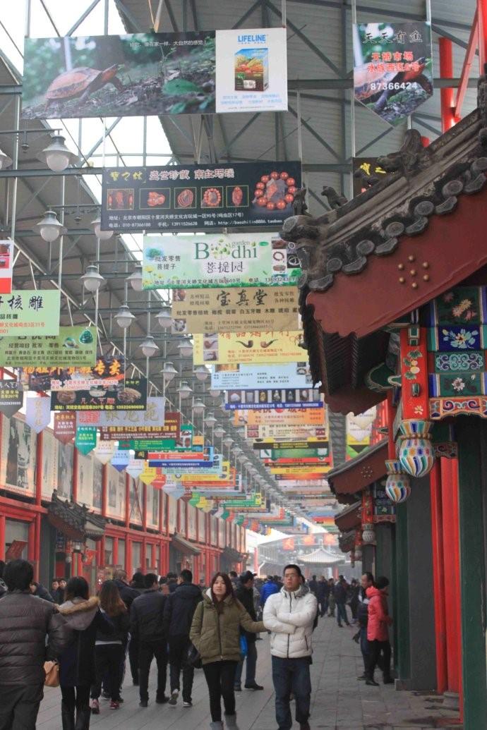 """博览城批发市场2011年12月12日,被授予""""中国钓具之都""""称号,威海新区管"""